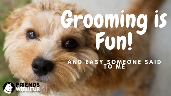 """Someone once told me """"Grooming is Fun and Easy"""""""